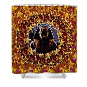 Pharaoh In The Starry Night Shower Curtain