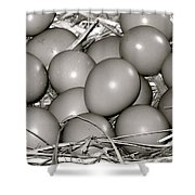 Pheasant Eggs Shower Curtain