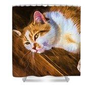 Philipsburg Manor - Barn Cat Nap Shower Curtain