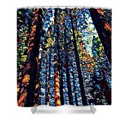 Phil's Trees Shower Curtain