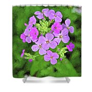 Phlox For You Shower Curtain