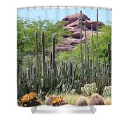 Phoenix Botanical Garden Shower Curtain by Carol Groenen