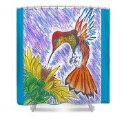 Phoenix Fire Hummingbird Shower Curtain