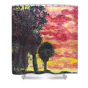 Phoenix Sunset Shower Curtain