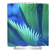 Photograph Of A Royal Palm In Blue Shower Curtain