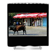 Phu My 2 Shower Curtain
