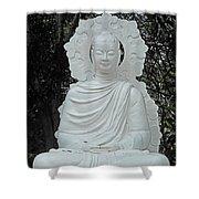 Phu My Statues 2 Shower Curtain