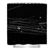 Pi-mesons, Bubble Chamber Event Shower Curtain