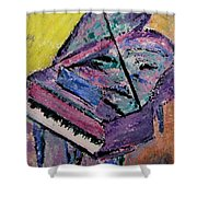 Piano Pink Shower Curtain by Anita Burgermeister