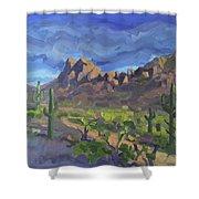 Picacho Peak Shower Curtain