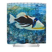 Picasso Fish Shower Curtain