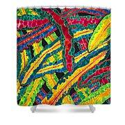 Picasso Paintbrush Croton Shower Curtain