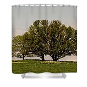 Picnic Time Shower Curtain