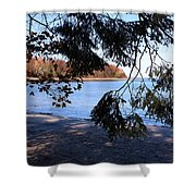 Picture 5 Shower Curtain