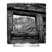 Picture Frame Shower Curtain
