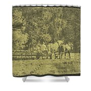 Picture Of Amish Boy In Book Shower Curtain