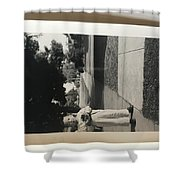 Picture Of Boy With Camera Shower Curtain
