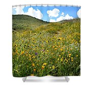 Picture Perfect Spring Shower Curtain