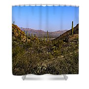 Picture Rocks 24 Shower Curtain