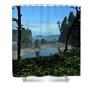 Picturesque Ruby Beach View Shower Curtain