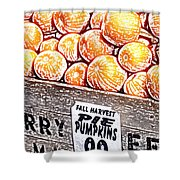 Pie Pumpkins For Sale Shower Curtain