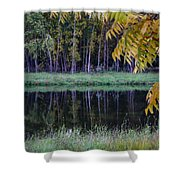 Pieceful Moments Shower Curtain