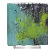 Pieces Of Dreams Shower Curtain