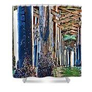 Pier Pylons Balboa Shower Curtain