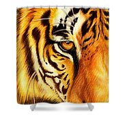 Piercing Glance Shower Curtain