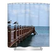 Piers By The Ocean2 Shower Curtain