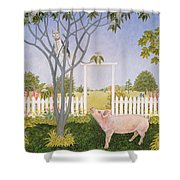 Pig And Cat Shower Curtain