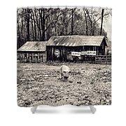 Pig Farm Lot B Shower Curtain