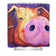 Pig On Purple I Shower Curtain