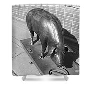 Pig Sculpture Grand Junction Co Shower Curtain