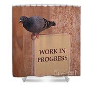 Pigeon - Work In Progress Shower Curtain