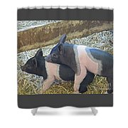 Piggyback Shower Curtain
