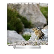 Pika Done Shower Curtain