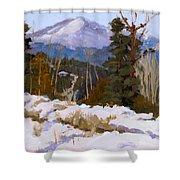 Pikes Peak Winter View Shower Curtain