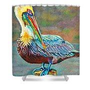 Pile High Pelican Shower Curtain