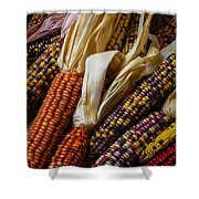 Pile Of Indian Corn Shower Curtain