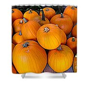 Pile Of Pumpkins For Sale Expressionist Effect Shower Curtain