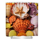 Pile Of Seashells Shower Curtain