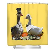 Pilgrim Ducks Shower Curtain