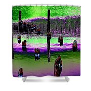 Pilings Of The Past Shower Curtain