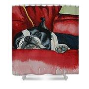 Pillow Pup Shower Curtain