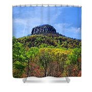 Pilot On A Spring Day Shower Curtain