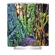 Pilot Rock Face Shower Curtain