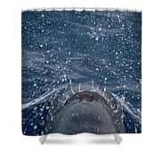 Pilot Whale 7 The Breath Shower Curtain