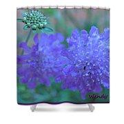 Pin Cushion Flower Shower Curtain