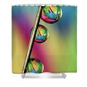 Pin Drop Shower Curtain